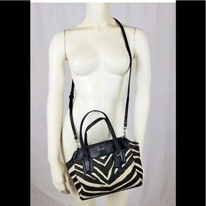 Zebra coach purse